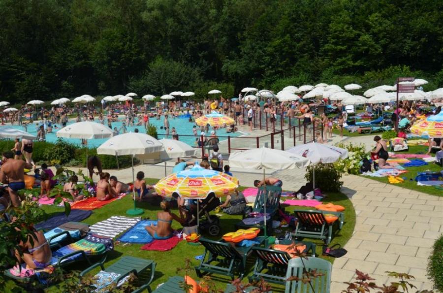 piscine bois de reves